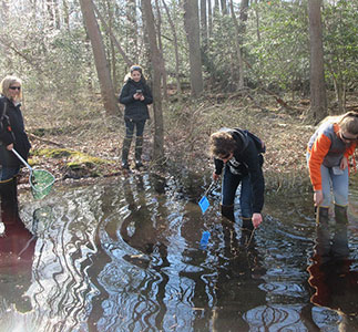 Photo of students participating in vernal pond study.